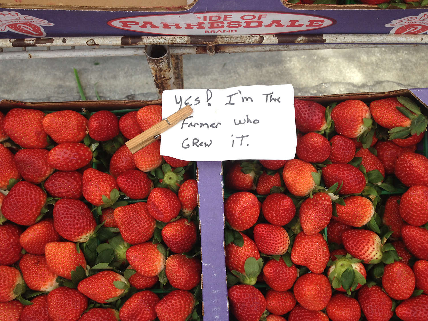 Tampa Bay farmers markets are lacking in just one thing